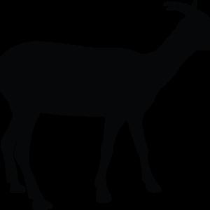 Ziege Silhouette BlechMal